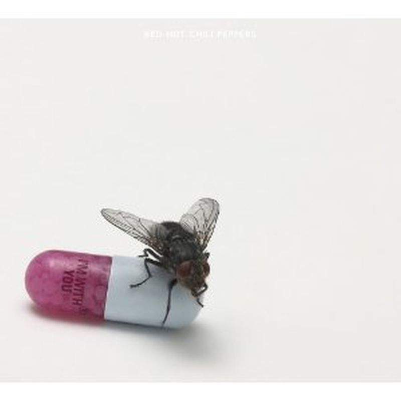 Red Hot Chili Peppers - I'm With You - Cd