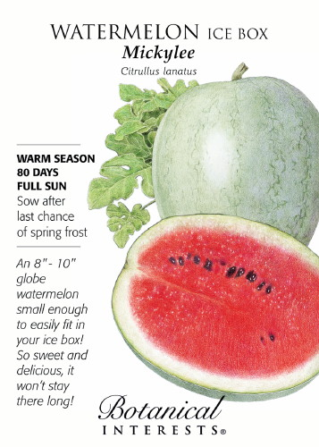 Details about ice box mickylee watermelon seeds 1 gram