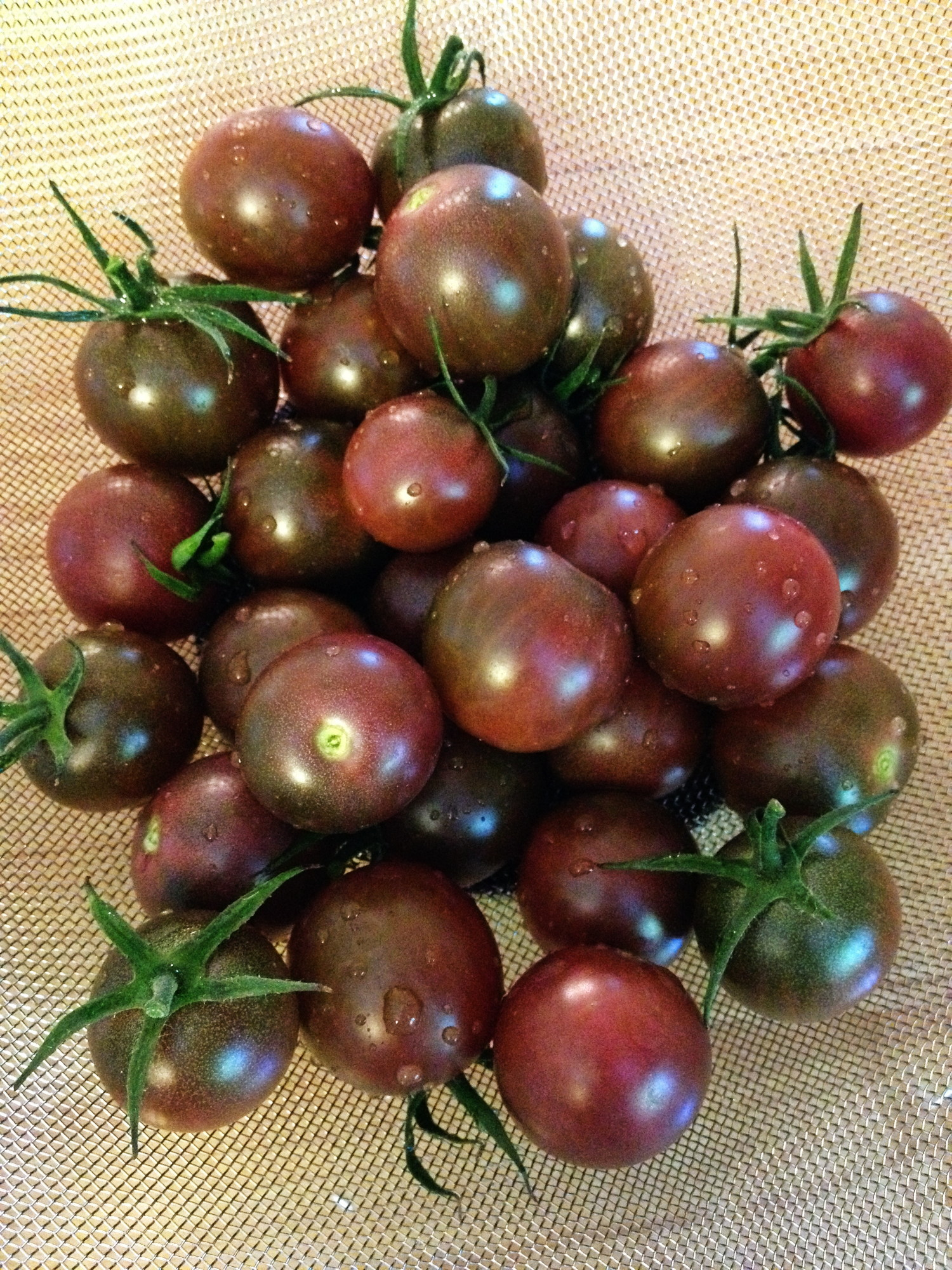 Chocolate Cherry Tomato Seeds - 150 Milligrams - GARDEN FRESH PACK ...
