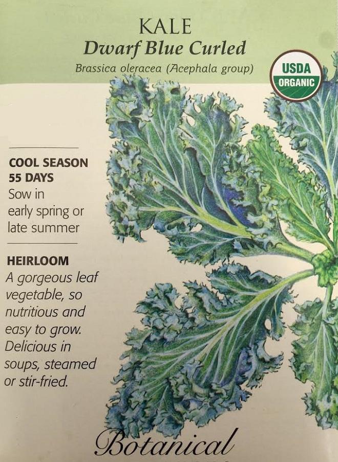Organic Dwarf Blue Curled Kale Seeds - 1 gram - Botanical Interests
