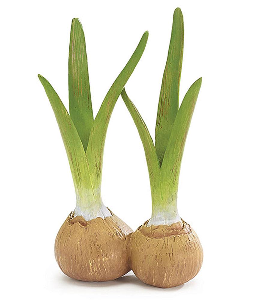 Onion Bulb Resin Shaped Flower Vase Floral Arrangement ...