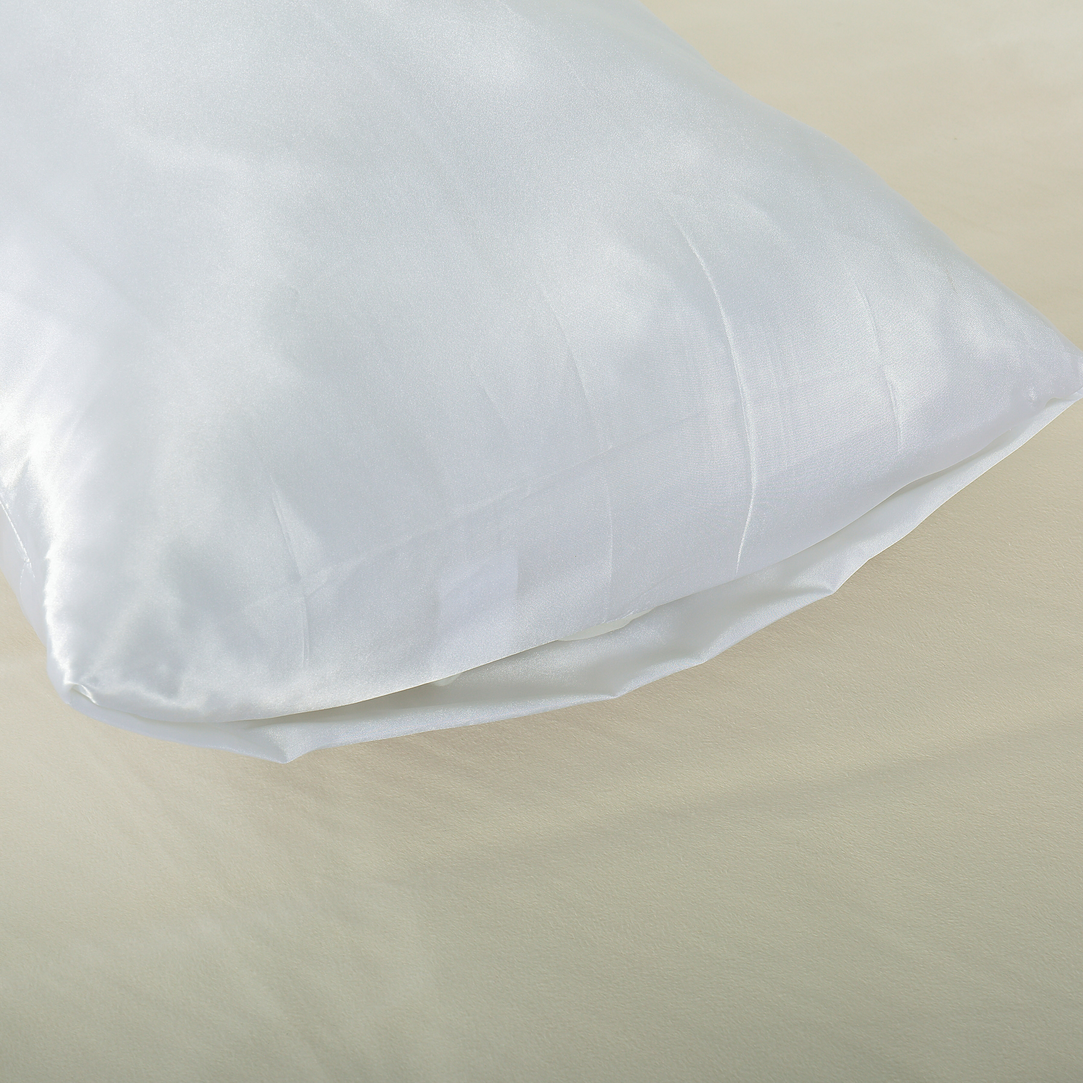 Evolive Stain standard//King Pillowcases set of 2
