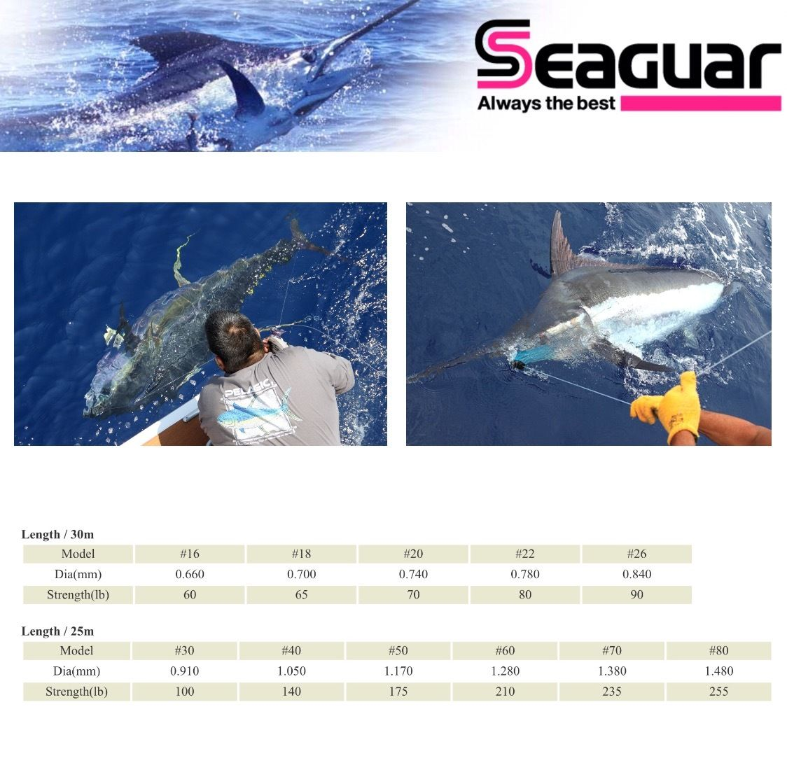 SEAGUAR 100/% FLUOROCARBON OFFSHORE FISHING LEADER  MANYU