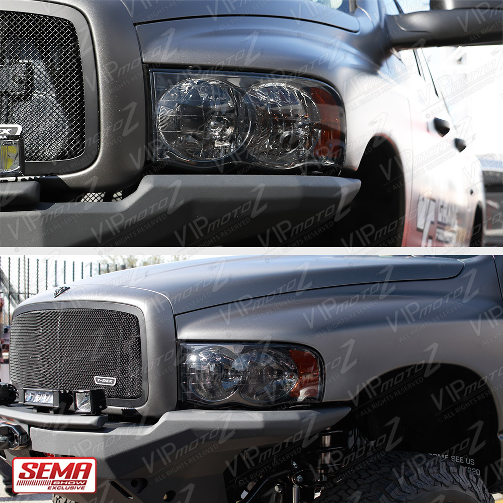 Dodge Ram 1500: Titanium Smoke 02-05 Dodge Ram 1500 Truck New Pair