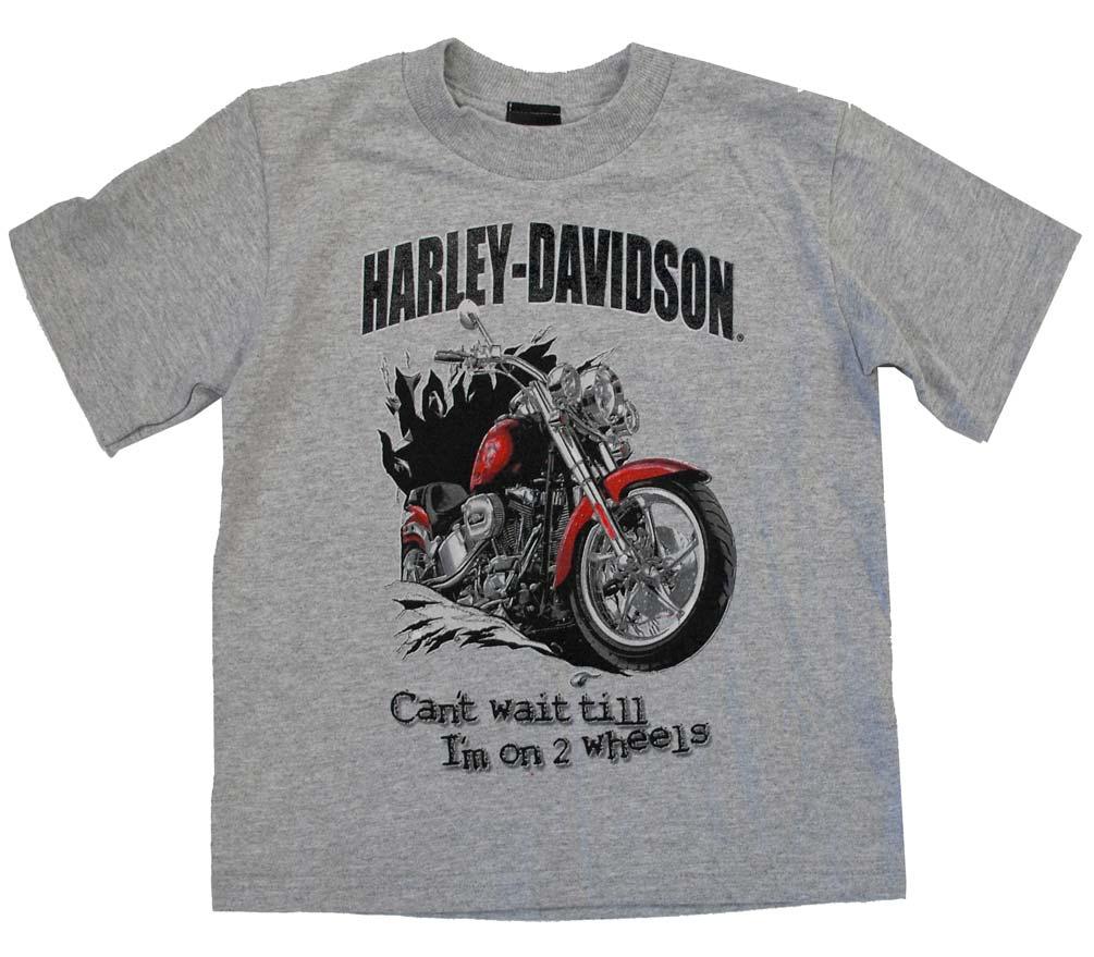 harley davidson little boys 39 motorcycle t shirt gray. Black Bedroom Furniture Sets. Home Design Ideas