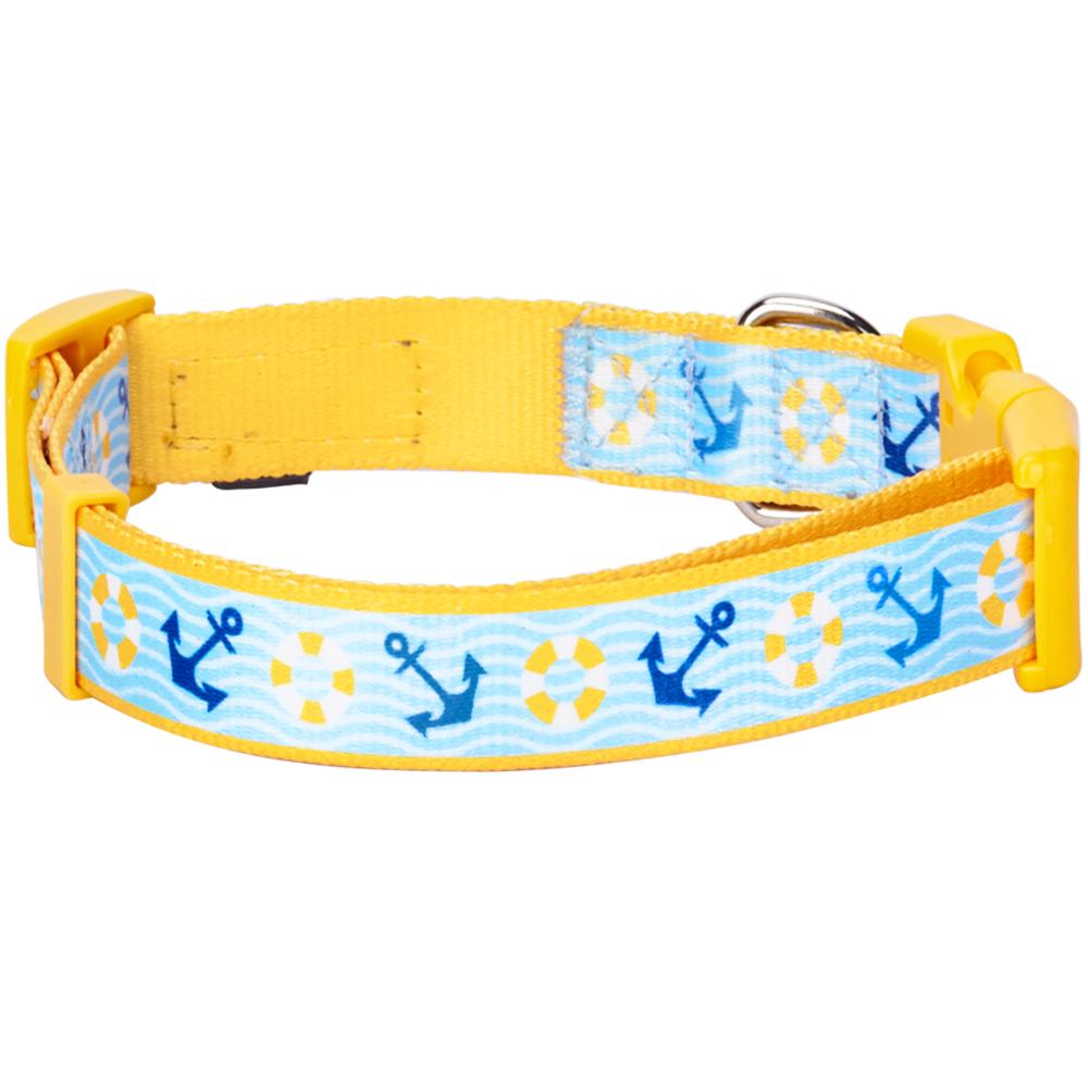 Blueberry Dog Collar