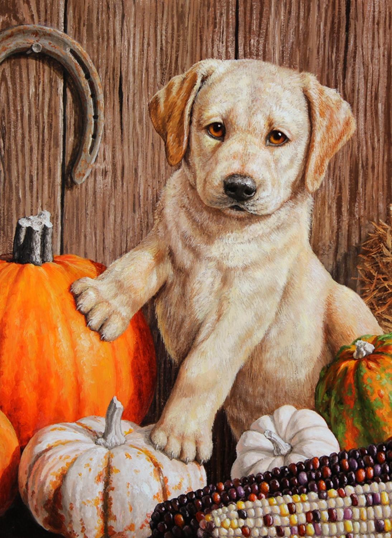 Pumpkin Harvest Puppy Autumn Garden Flag - DiscountDecorativeFlags.com