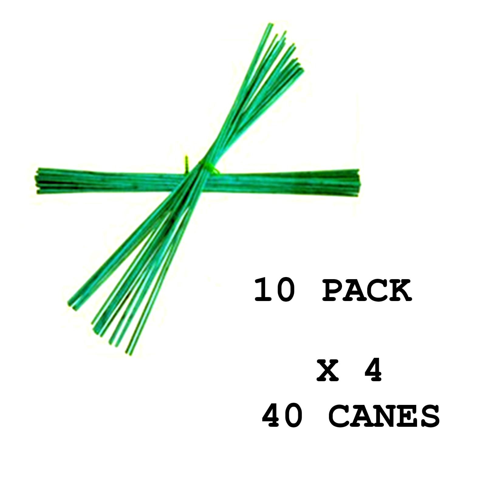 Diy plant supports - Green Split Canes 60cm 24 034 Garden Plant
