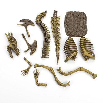 Generic Plastic Dino Excavation Dinosaur Skeleton ...