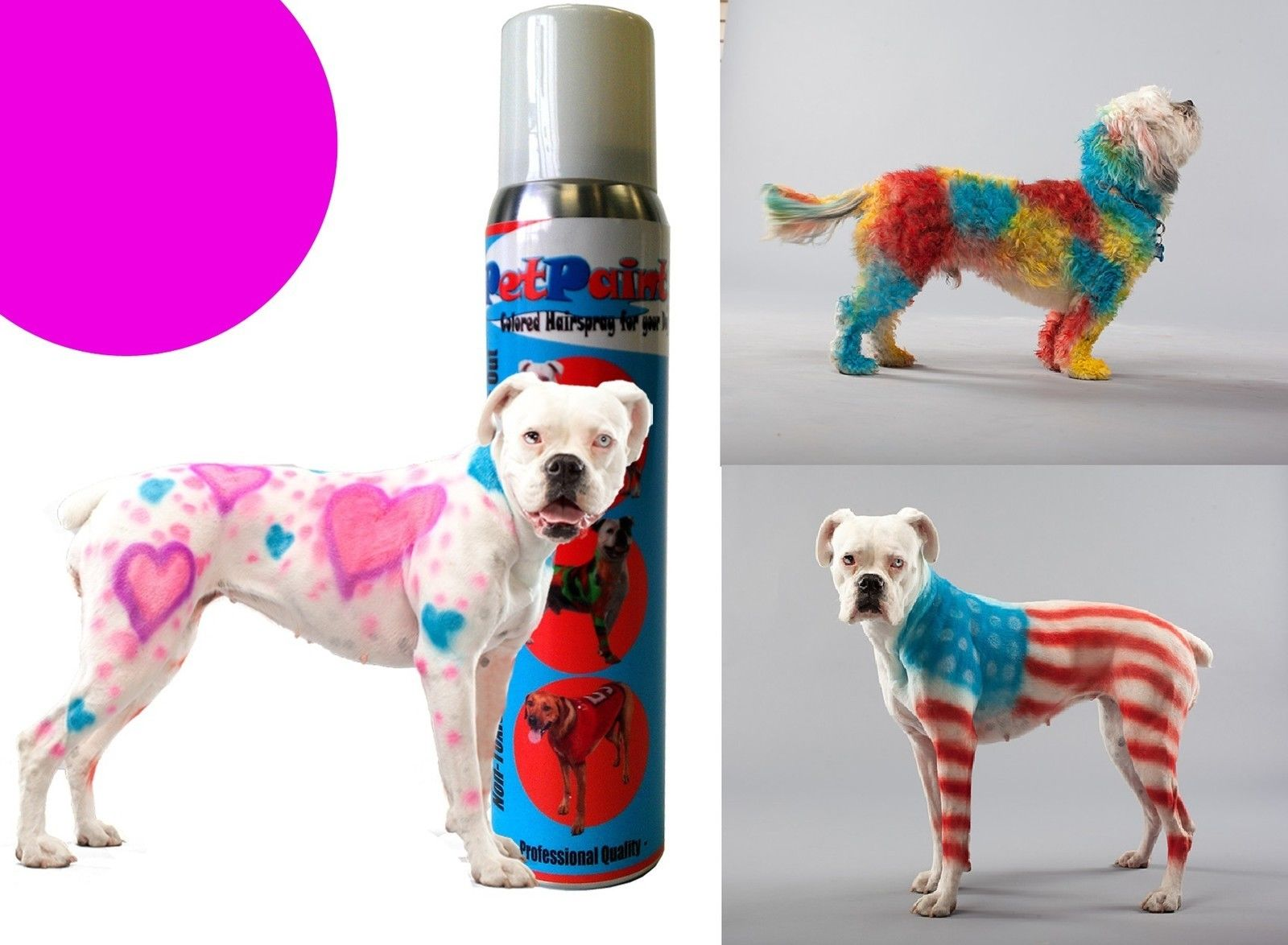 Pet Paint Dog Animal Safe Temporary Hairspray Hair Color Spray Can ...