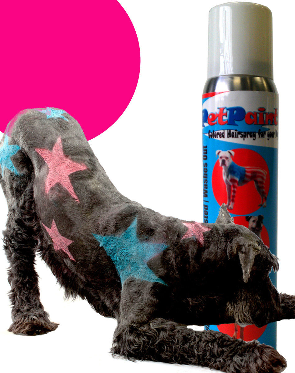 pet paint dog animal safe temporary hairspray hair color