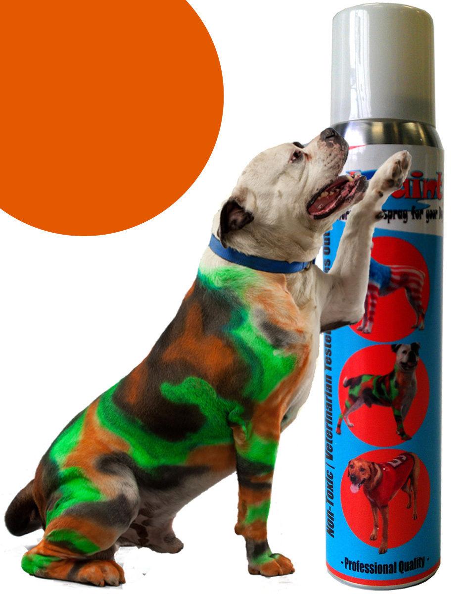 Pet Paint Dog Animal Safe Temporary Hairspray Hair Color Spray Can Halloween 5oz Ebay