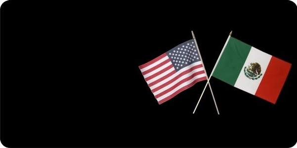 USA/Mexico Crossed FLAGs Photo License Plate Free Personalization on this plate