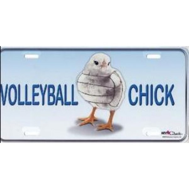 VOLLEYBALL Chick Airbrush License Plate Free Personalization on this Air Brush