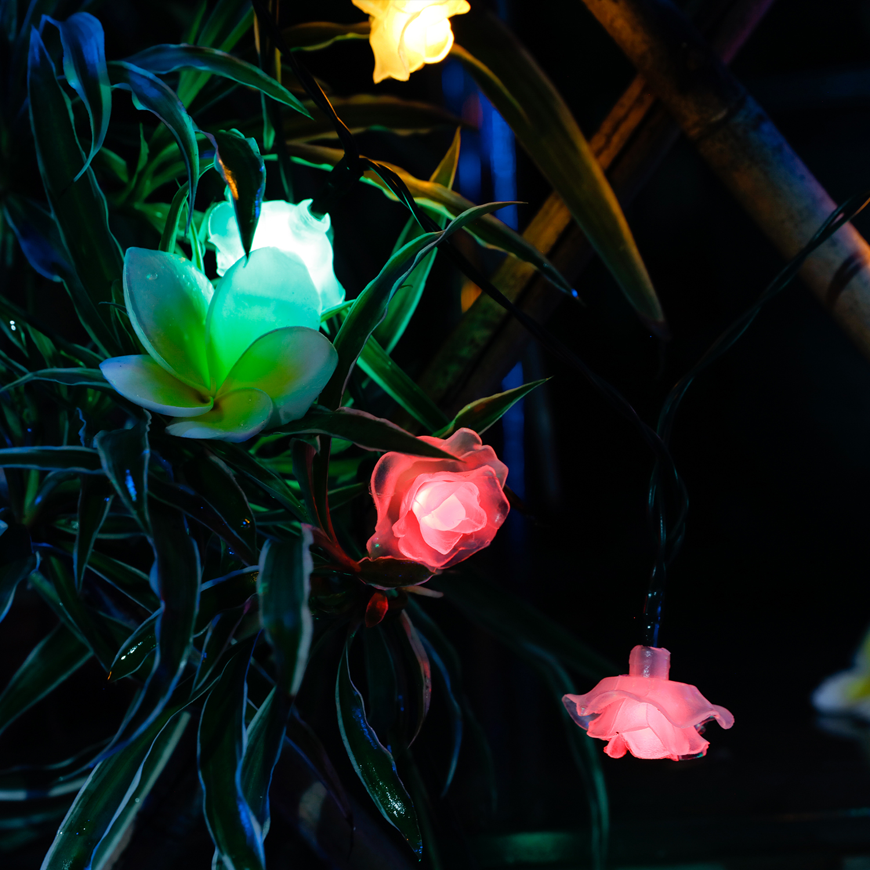50LED 26ft Fairy String Lights Rose Flower Decorative Solar Lights Outdoor Funny eBay