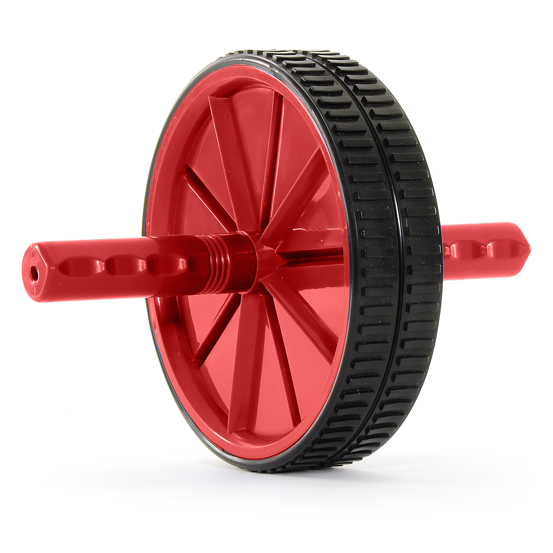 ab roller wheel exercises pdf