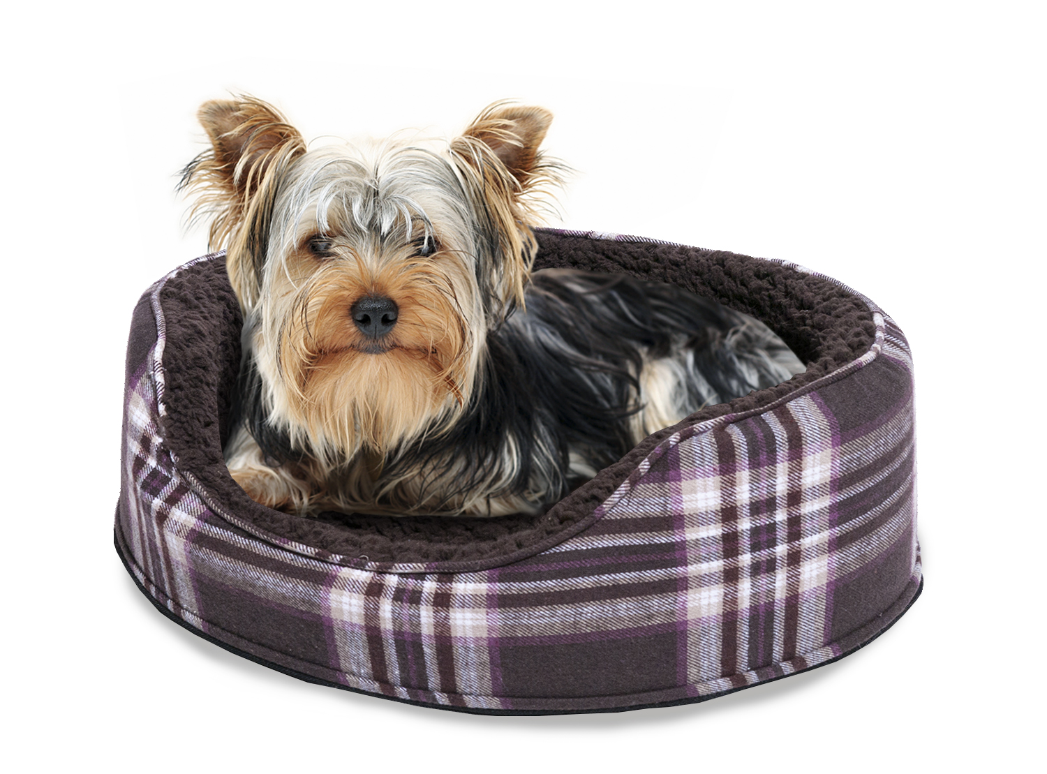 catnap pet products case study 6 1 Hero dog treats case study solution, hero dog treats case solution canadian pet food market is hire us for originally written case solution/ analysis.