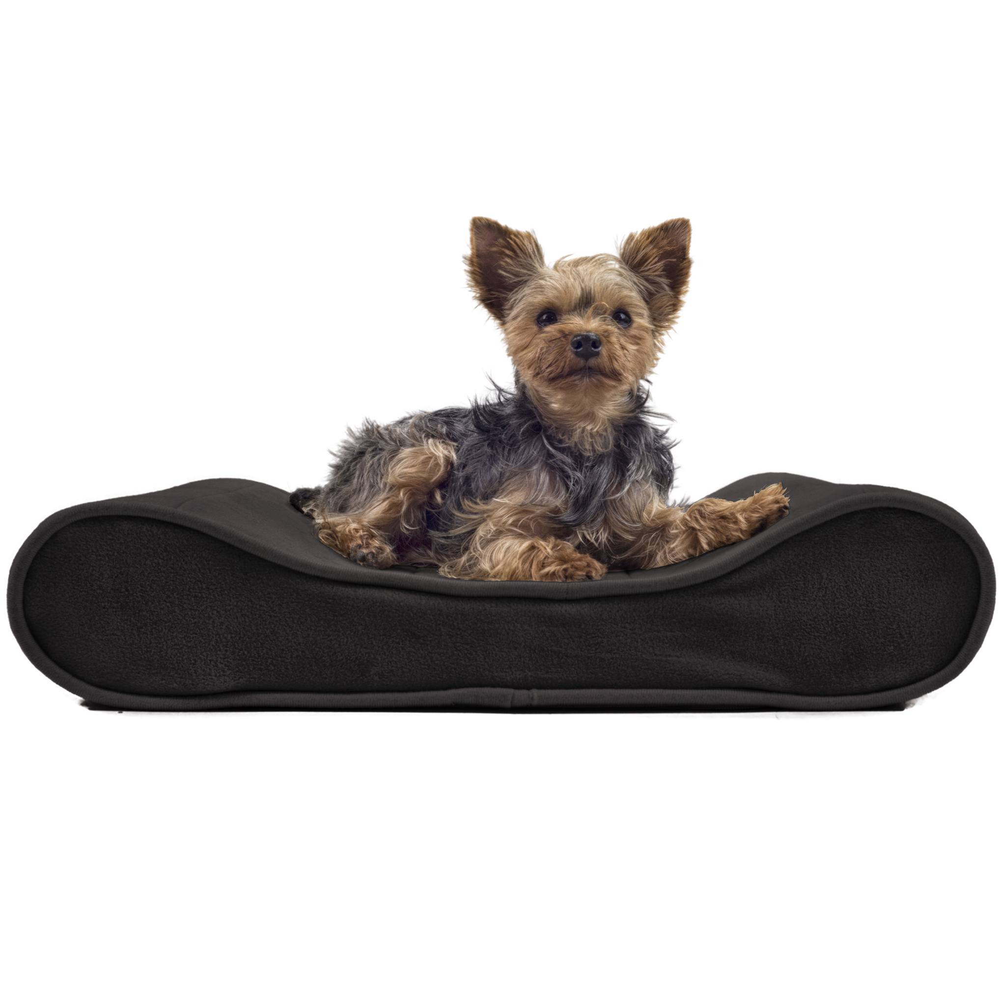 furhaven microvelvet luxe lounger contour orthopedic dog With luxe dog bed