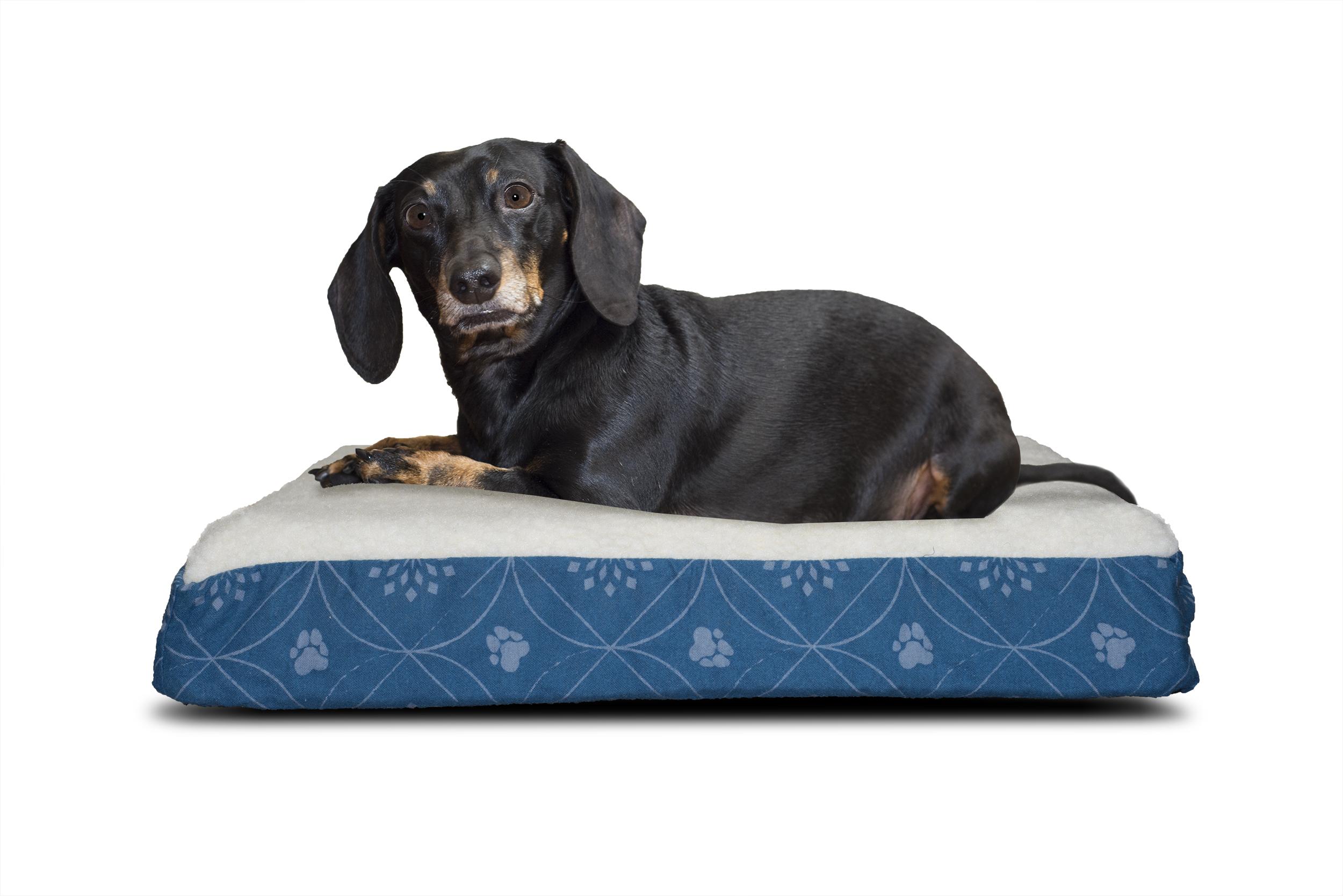 furhaven nap pet bed deluxe flannel egg-crate orthopedic mat pet