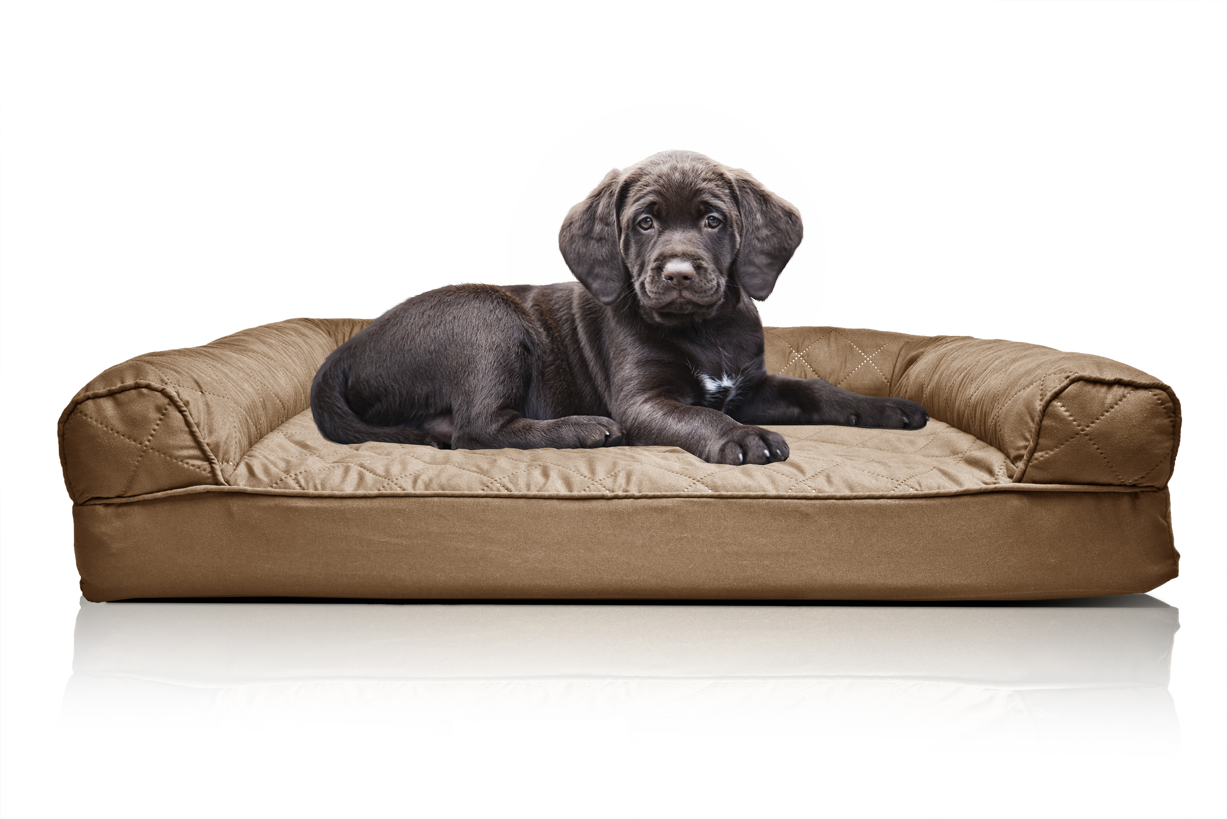furhaven quilted orthopedic sofa dog bed pet bed ebay. Black Bedroom Furniture Sets. Home Design Ideas