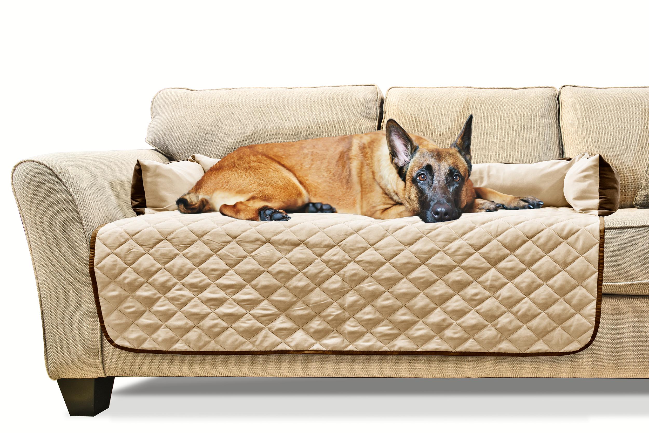 furhaven sofa buddy pet bed furniture cover ebay. Black Bedroom Furniture Sets. Home Design Ideas