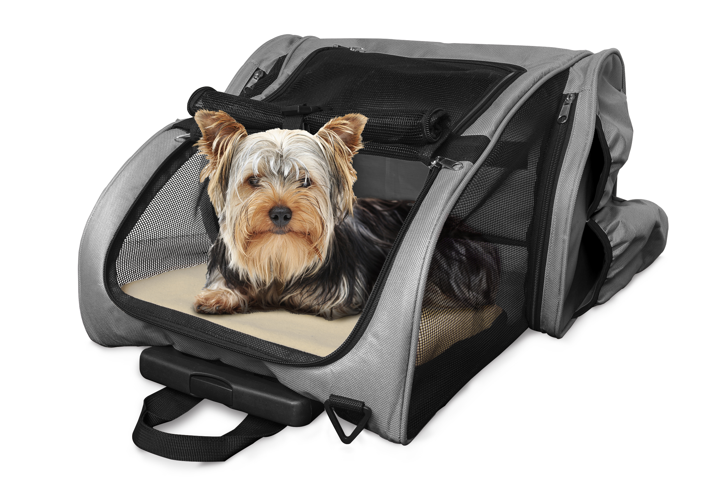 Front Carrier For Large Dogs