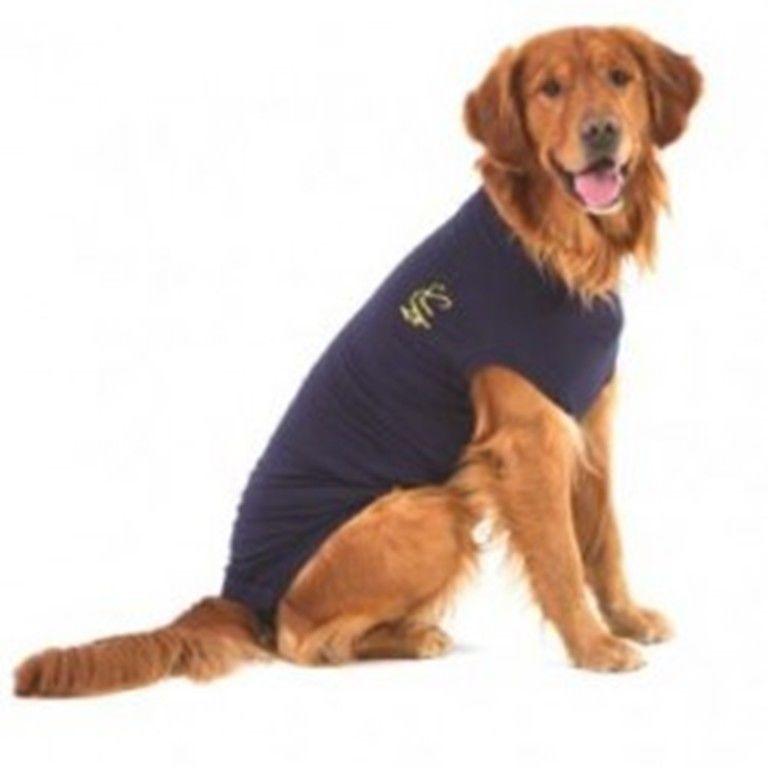 Medical Pet Shirt Protection After Surgery Dog Cat Size