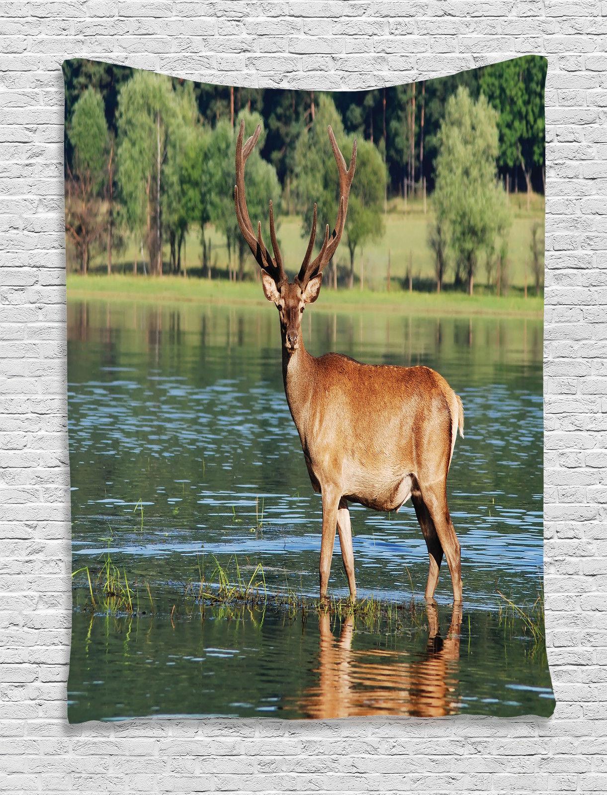 Mountain deer in water forest habitat image nature decor for Decoration habitat