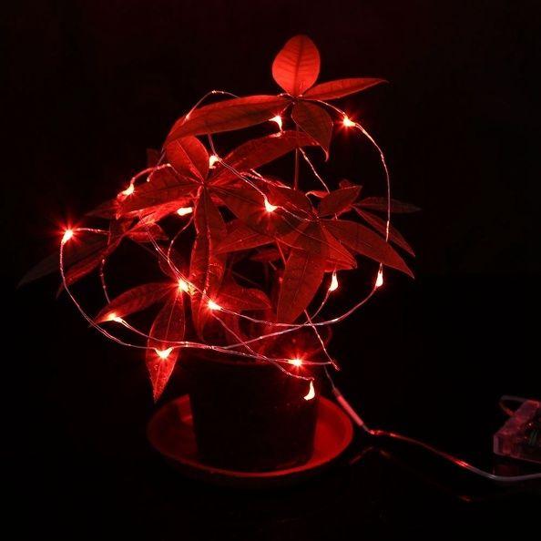Led draht lichterkette beleuchtung wasserdicht biegsam kupfer batterie dekodraht ebay - Led draht lichterkette ...