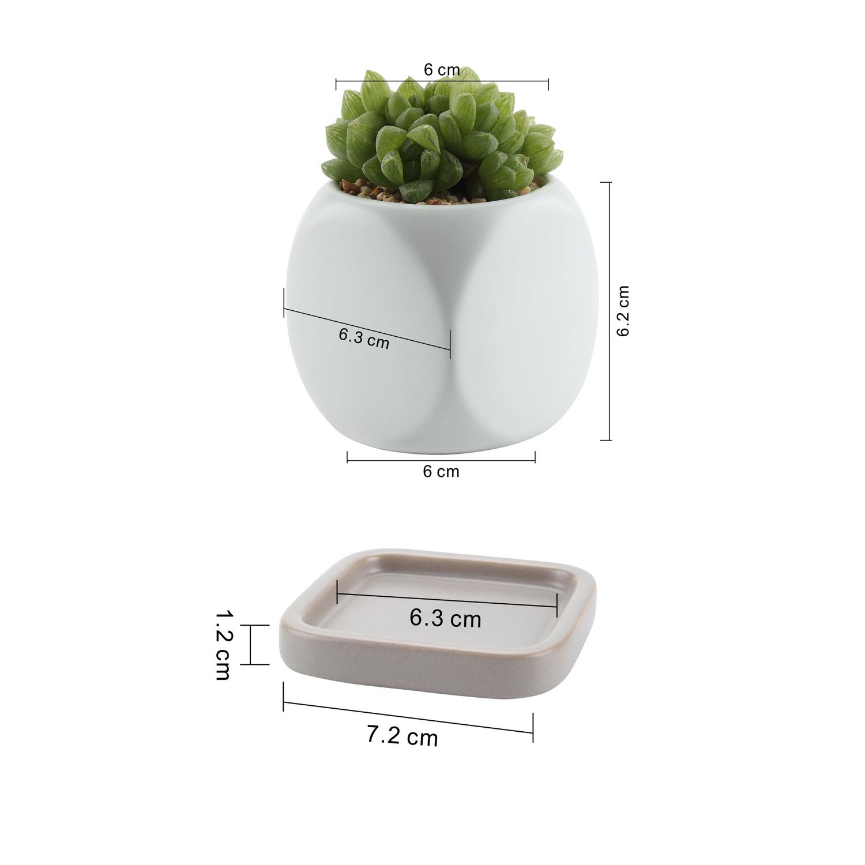 T4U céramique succulentes jardiniere pot Matte dés PETIT CACTUS PLANT Pots Conteneur
