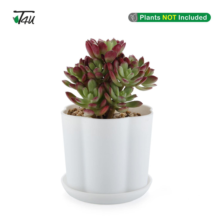 environ 9.52 cm pots en plastique avec soucoupe Blanc Résine Planteur Plante de Jardin Conteneur T4U 3.75 IN