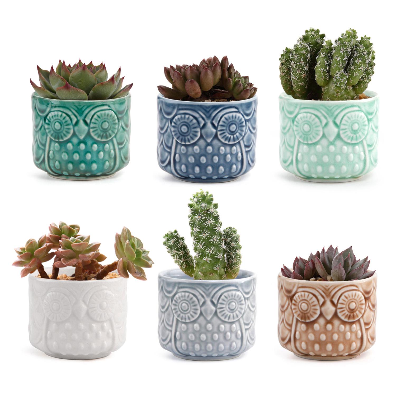 """T4U 2.6/"""" Ceramic Owl Succulent Cactus Planter Flower Pot Set Full Color Set of 6"""