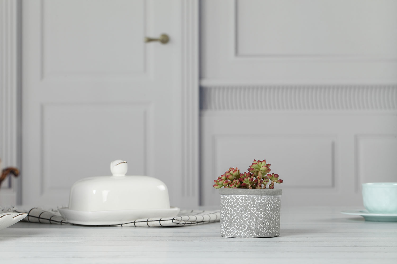T4U Cute Ceramic Succulent Pots White Egg Succulent Planter with Bamboo Tray