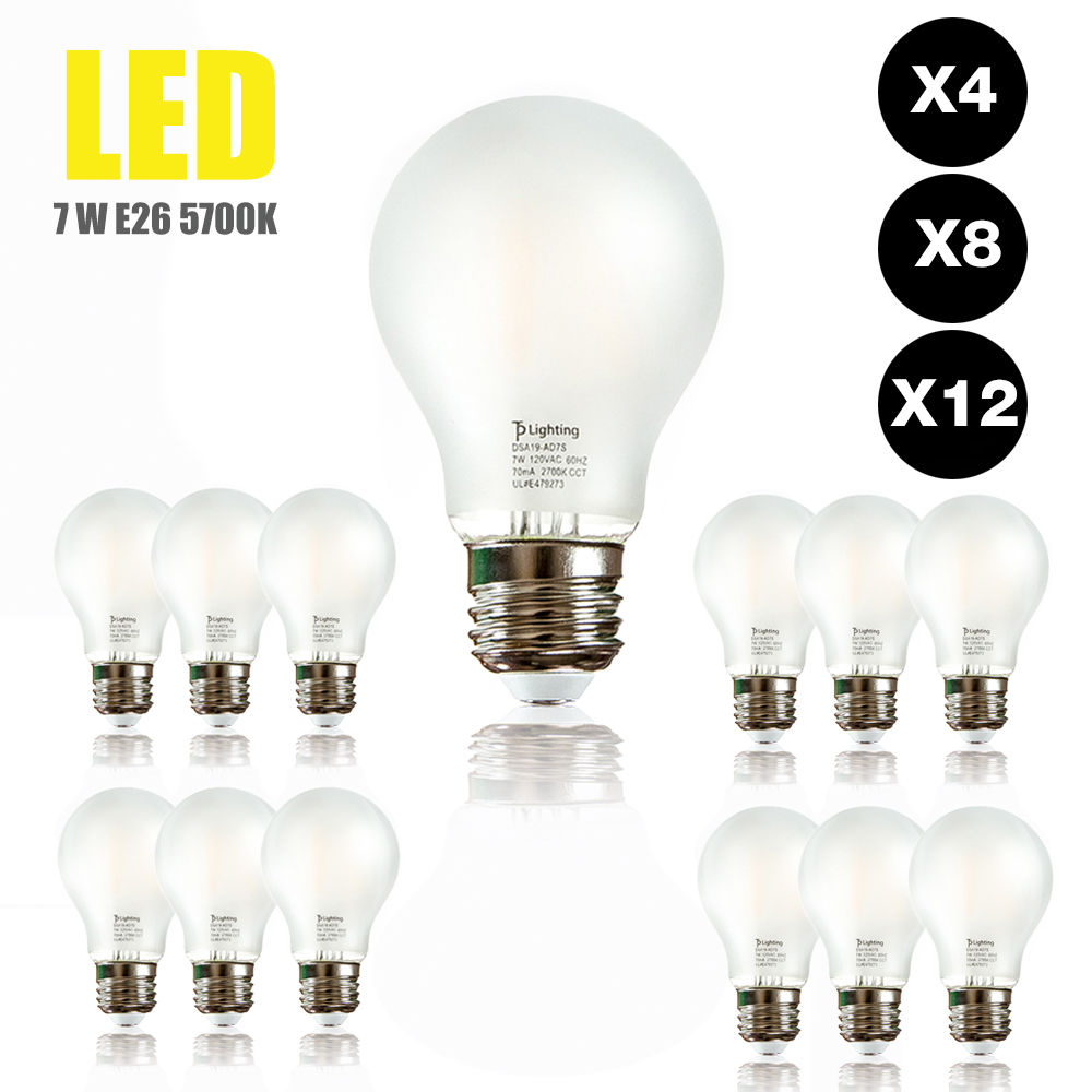 60 Watt Equivalent SlimStyle E26 LED Light Edison Bulb ...
