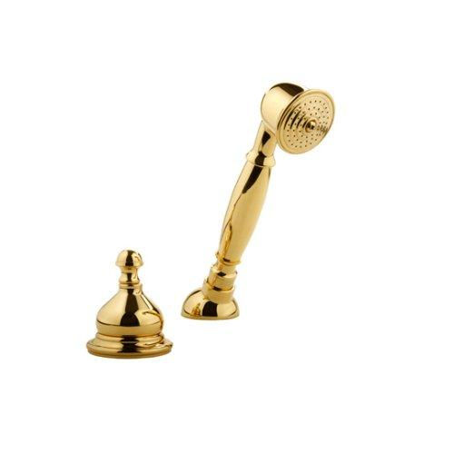 Meridian Faucets 2030020 Hand Held Shower with Diverter (Solid Brass Construction), Gold