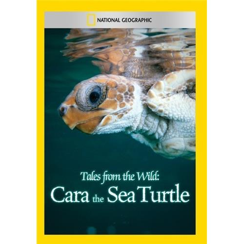 gifts and gadgets store - Tales from the Wild: Cara the Sea Turtle - Documentary - Movies and DVDs