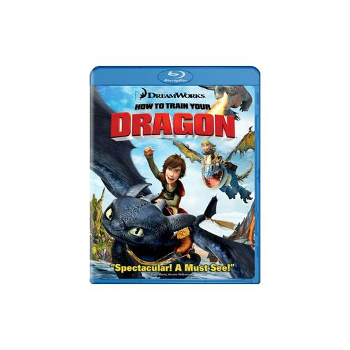 HOW TO TRAIN YOUR DRAGON (BLU-RAY/FAMILY ICONS ORING) 24543161141