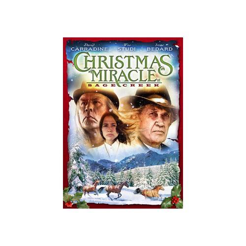 CHRISTMAS MIRACLE AT SAGE CREEK (DVD) 25195017664