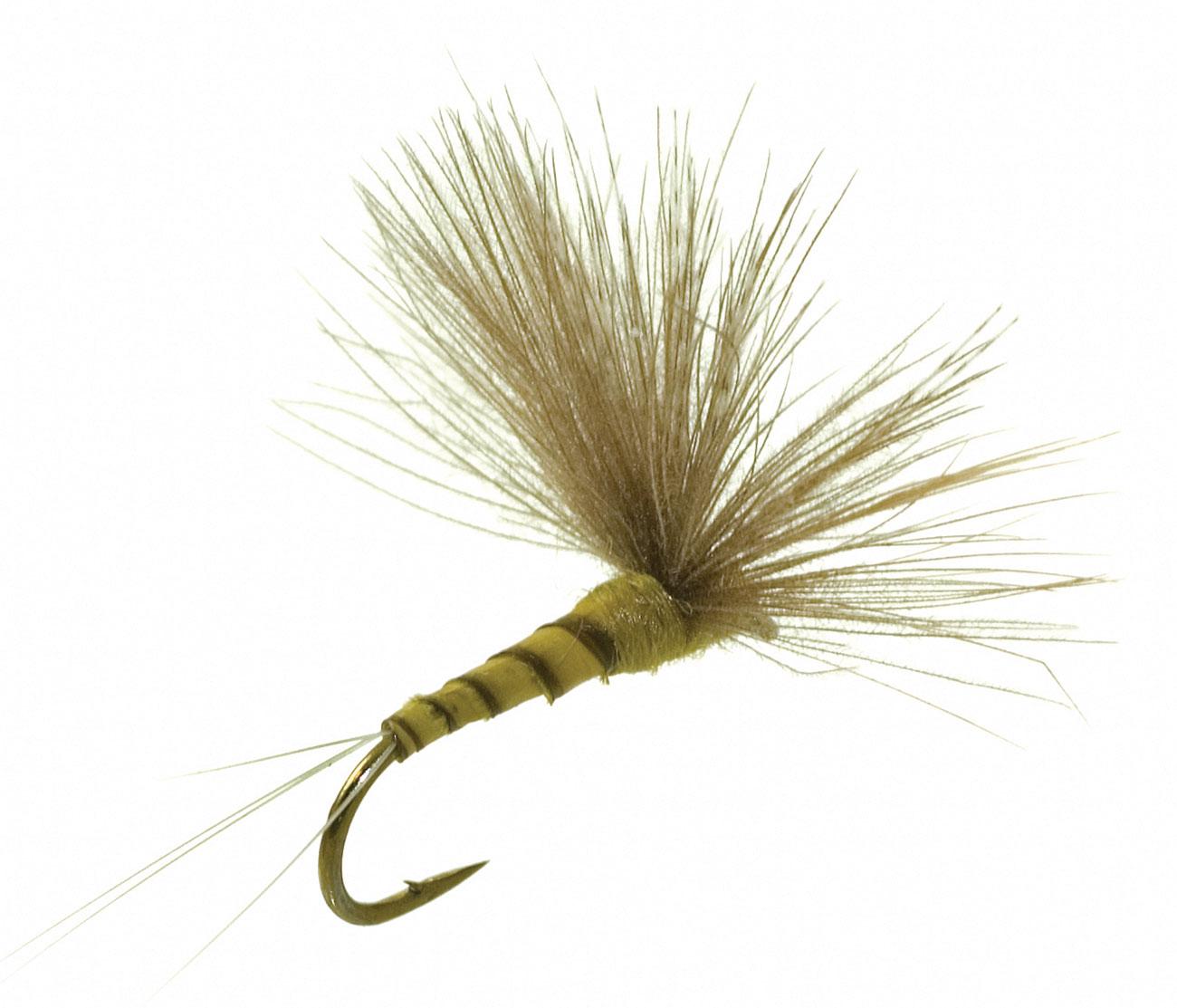 Umpqua CDC Biot Comparadun BWO Fly Fishing Dry Flies Multi-packs