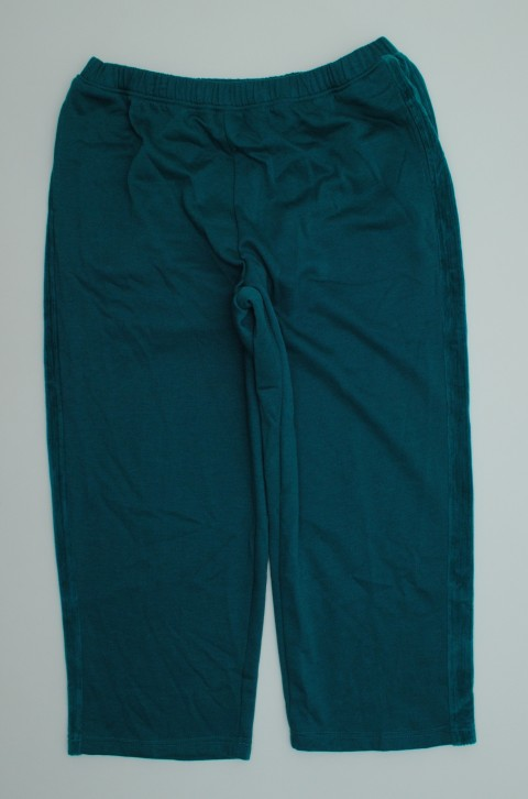Alfred Dunner NEW ALFRED DUNNER WOMENS  BLUE PANTS 20W at Sears.com