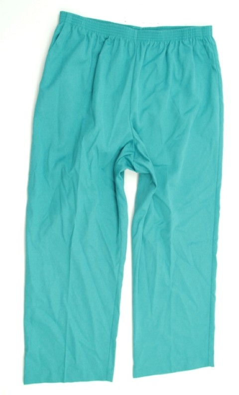Alfred Dunner NEW ALFRED DUNNER WOMENS PROPORTIONED SHORT GREEN PANTS 18 at Sears.com