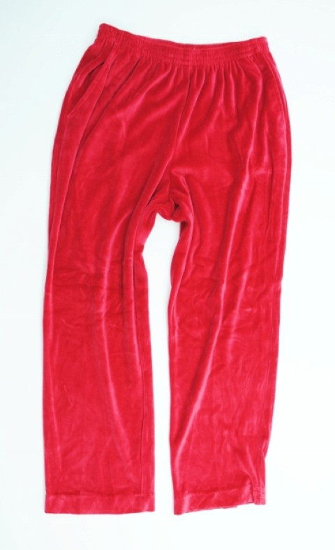 Alfred Dunner NEW ALFRED DUNNER WOMEN'S RED PANTS 10