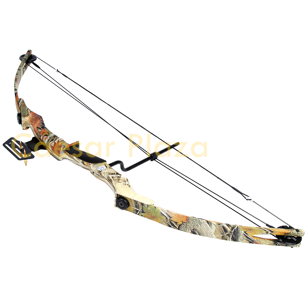 an analysis of bow hunting and archery The archer holds the bow arm outwards using archery to take game animals is known as bow hunting bow hunting differs markedly from hunting with firearms.