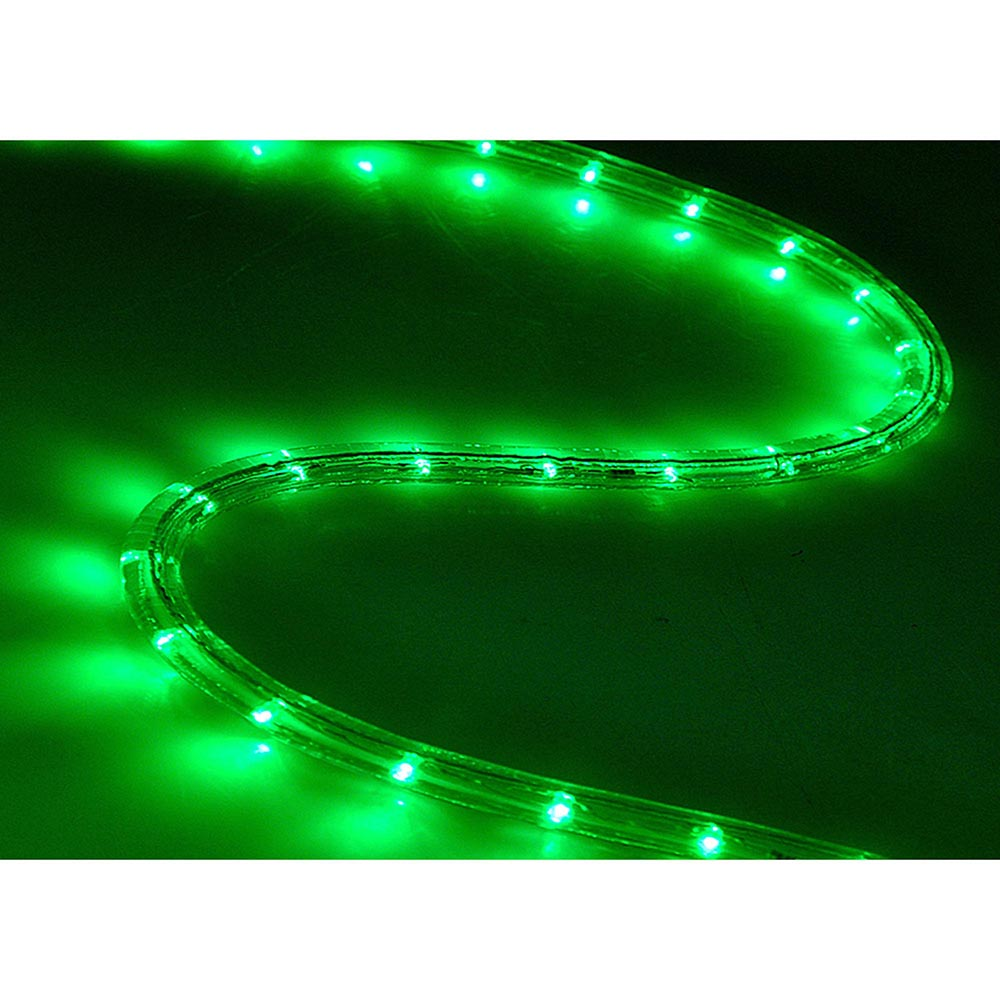 Delight 150ft Led Rope Light 2 Wire Outdoor Home Decoration Party Lighting 110v Ebay