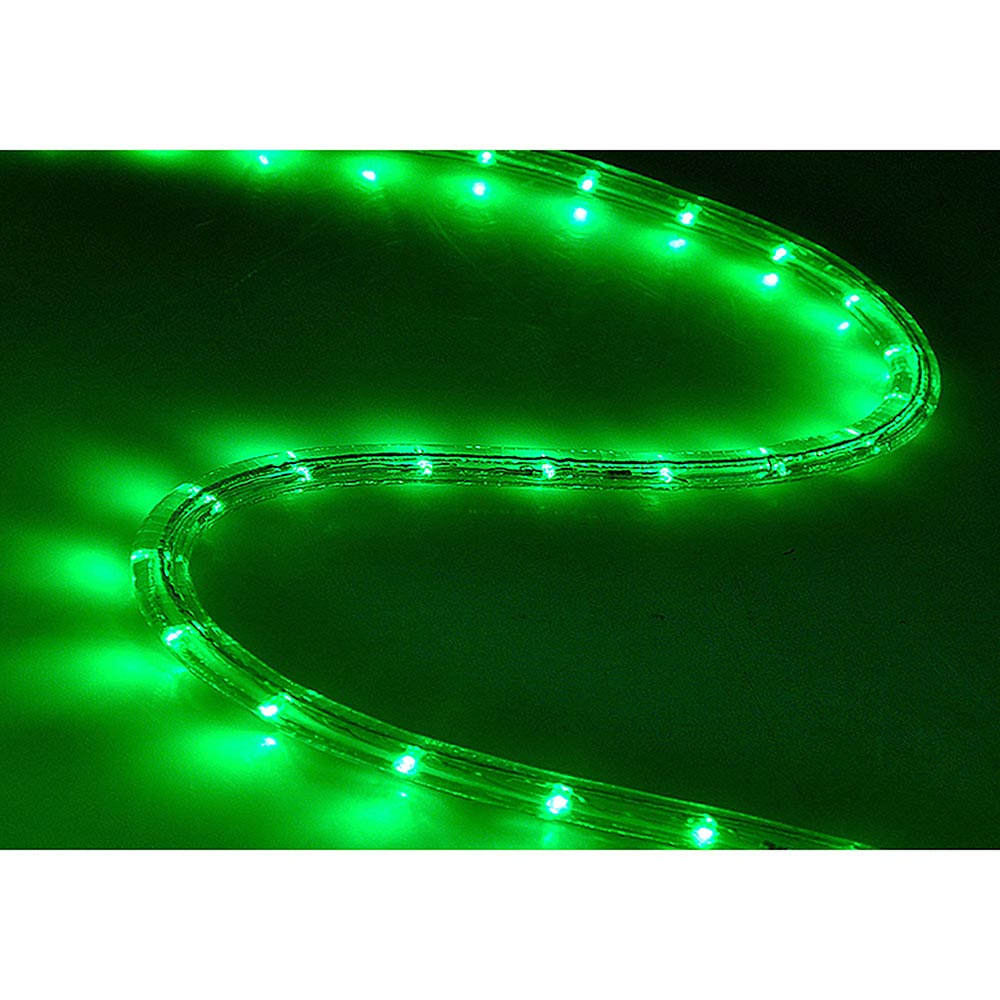 Delight 50 39 led rope light home in outdoor christmas for Outside christmas lights