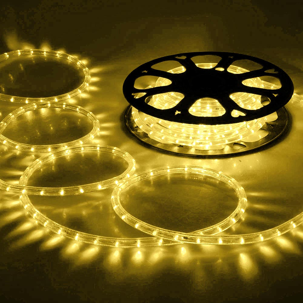 150 led rope light 110v 2 wire party home christmas outdoor xmas 150 039 led rope light 110v 2 wire workwithnaturefo