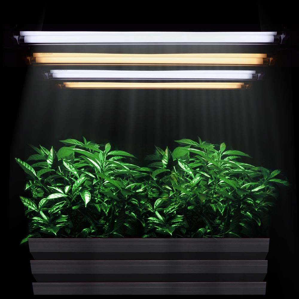 when how lighting seedling university fluorescent for cart farm to blog use your should grow lights you upstart choose