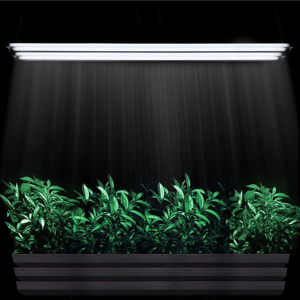 4 39 ft t5 grow light fluorescent tubes hydroponics 6500k. Black Bedroom Furniture Sets. Home Design Ideas