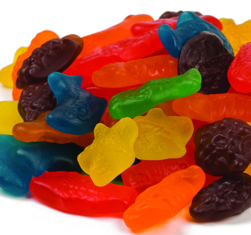 Swedish fish aqua life aquarium life bulk candy 1 pound ebay for Swedish fish bulk