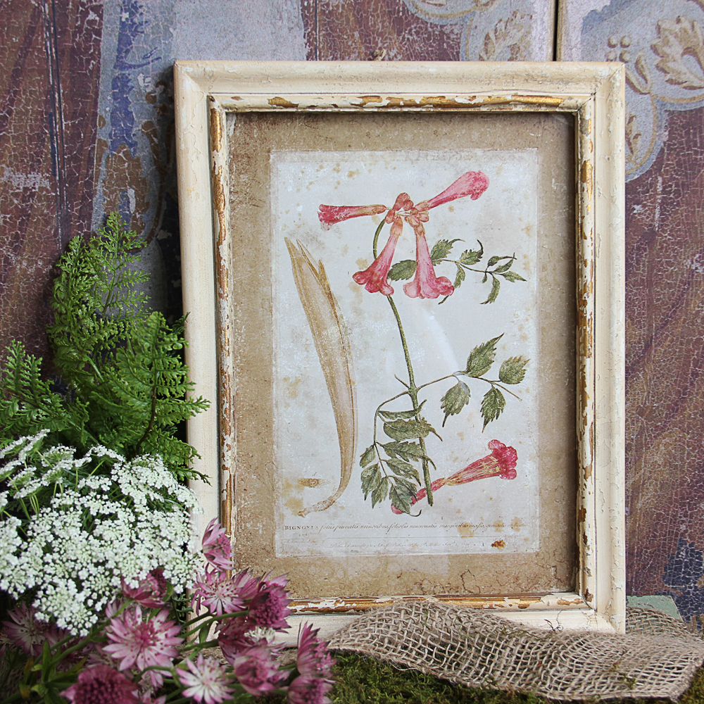 details about shabby cottage chic floral print wall art b173